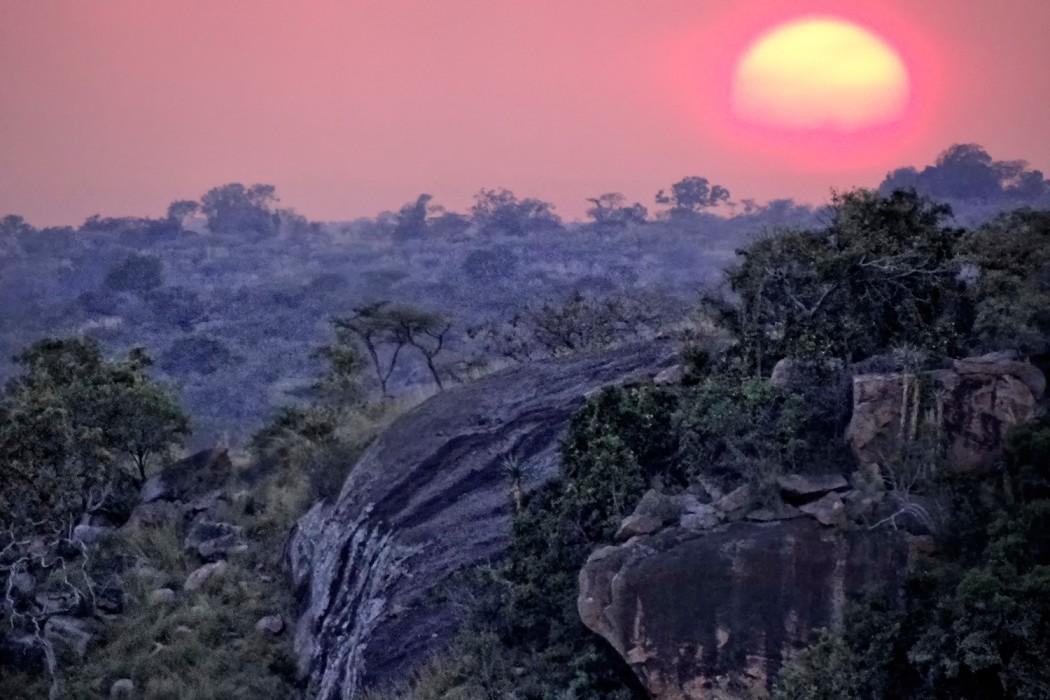 Elewana---Tarangire-landscape