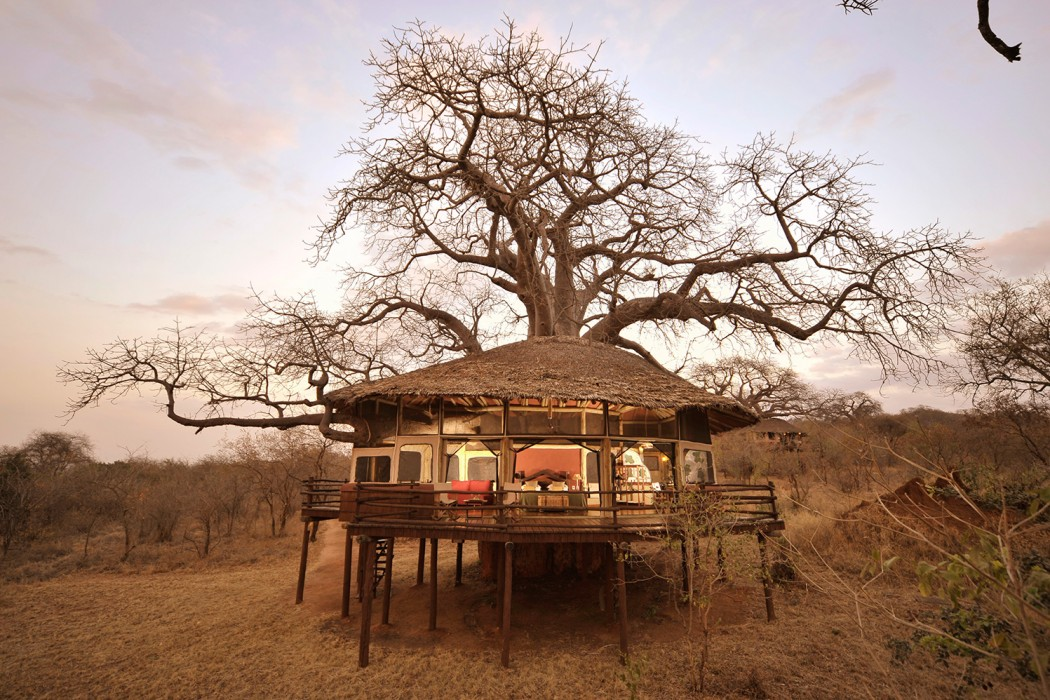 Elewana---Tarangire-tree-house
