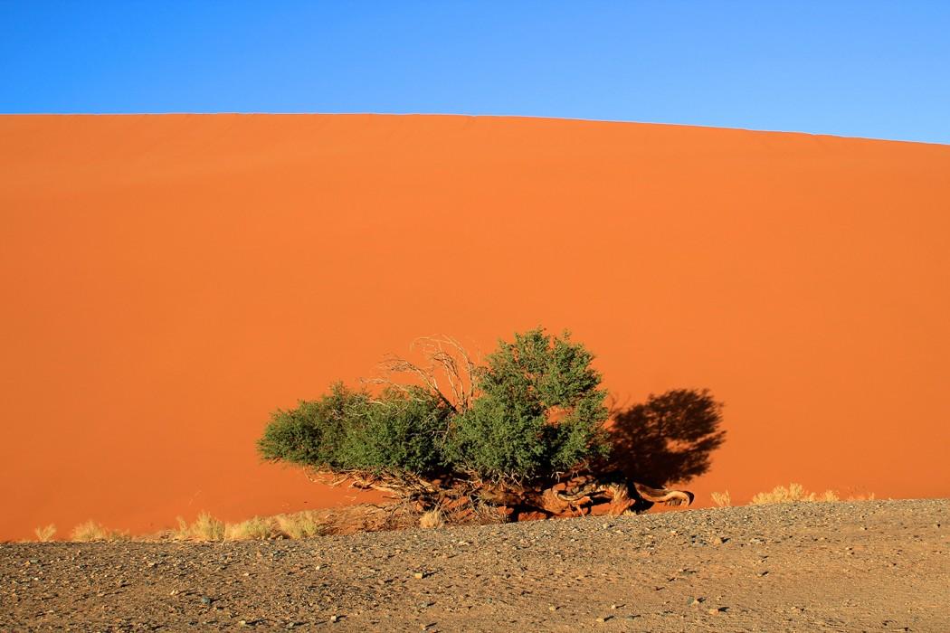 Voyage-ephemere-Namibie-6