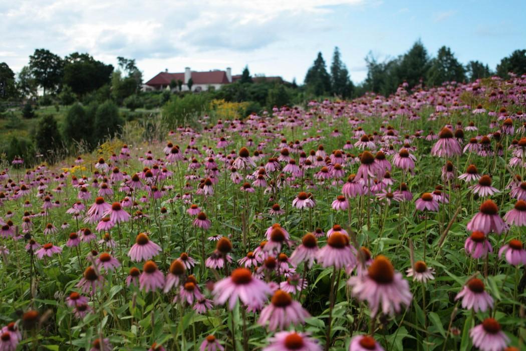 Le Baluchon Canada-Jardins