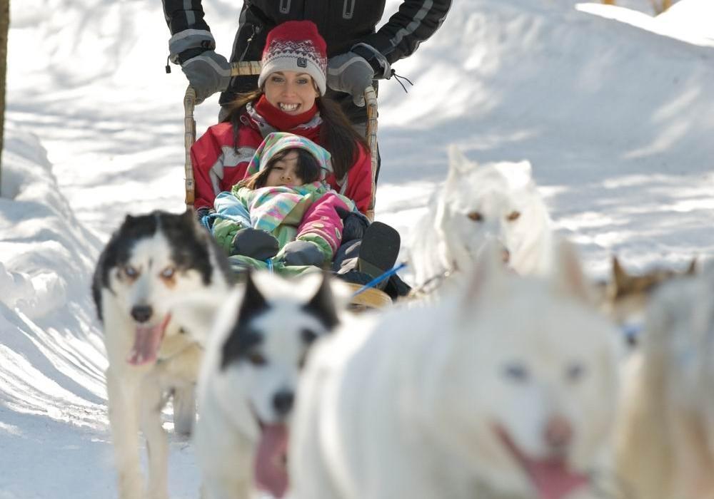 Le Baluchon Canada-traineau a chiens