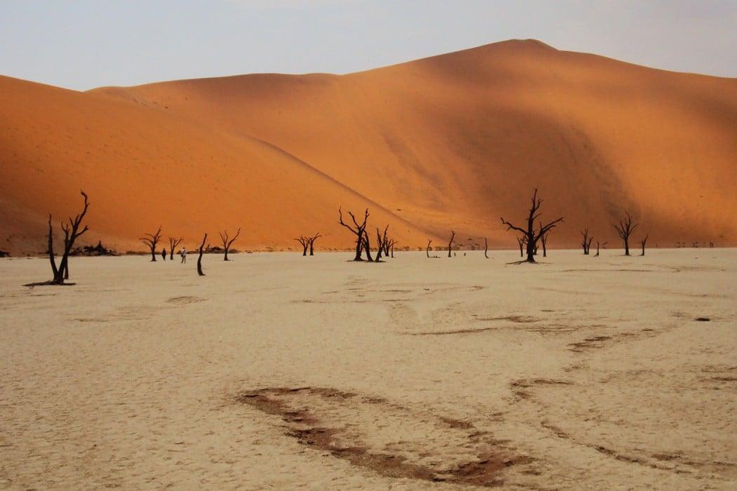 Namibie-Marlene-Le-Signor-(3)