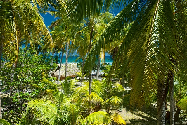 Le Sauvage Private Island_Mon Plus Beau Voyage 1