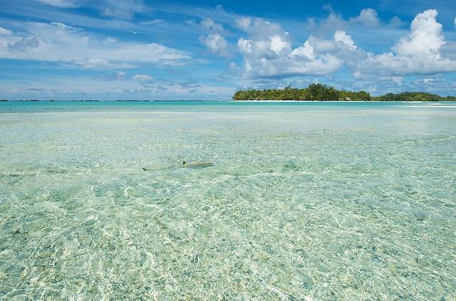 Le Sauvage Private Island_Mon Plus Beau Voyage 10
