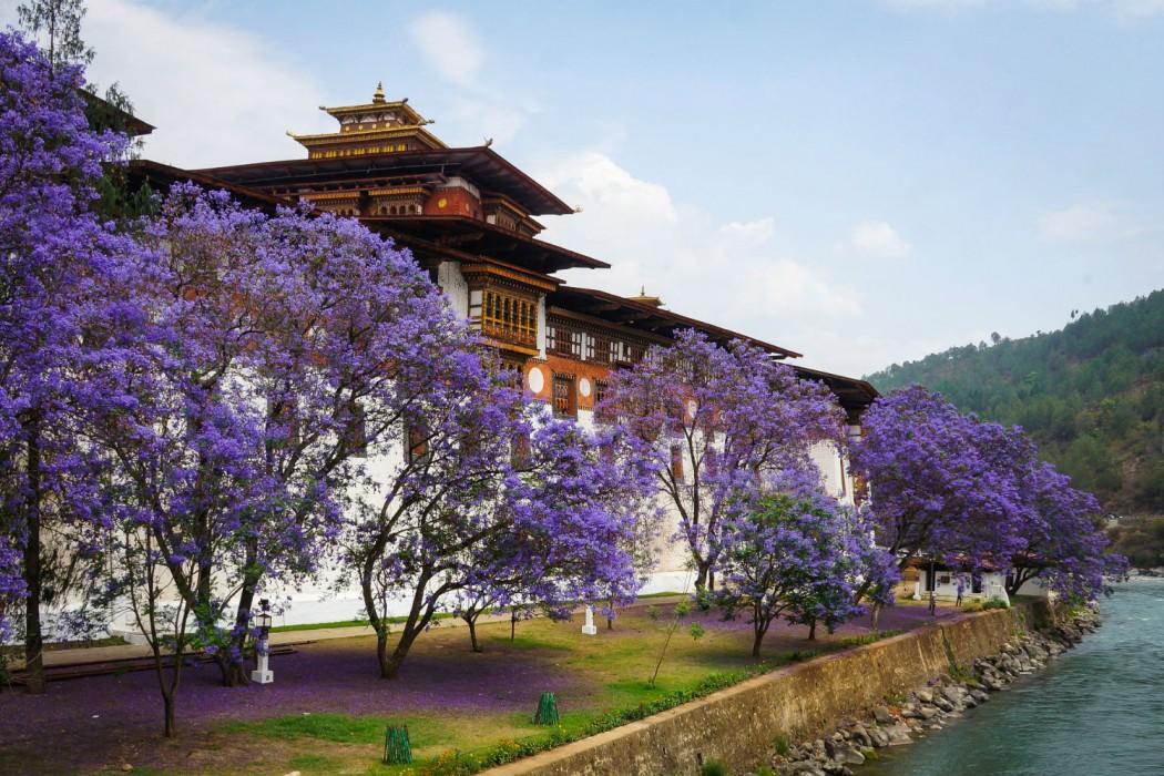 Mon Plus Beau Voyage au Bhoutan_Amankora 9