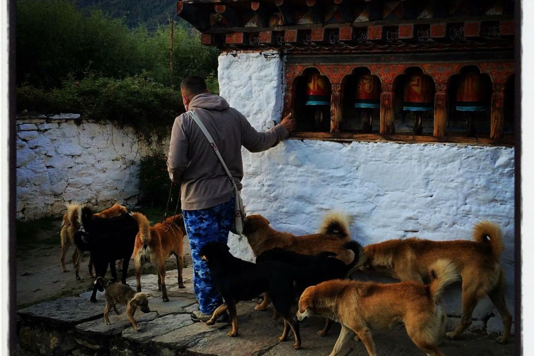 Mon Plus Beau Voyage_Amankora_Bhoutan__ex-Paro_02