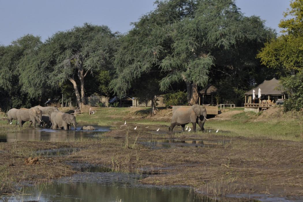 Zimbabwe Mana Pools Ruckomechi - Mon Plus Beau Voyage 1