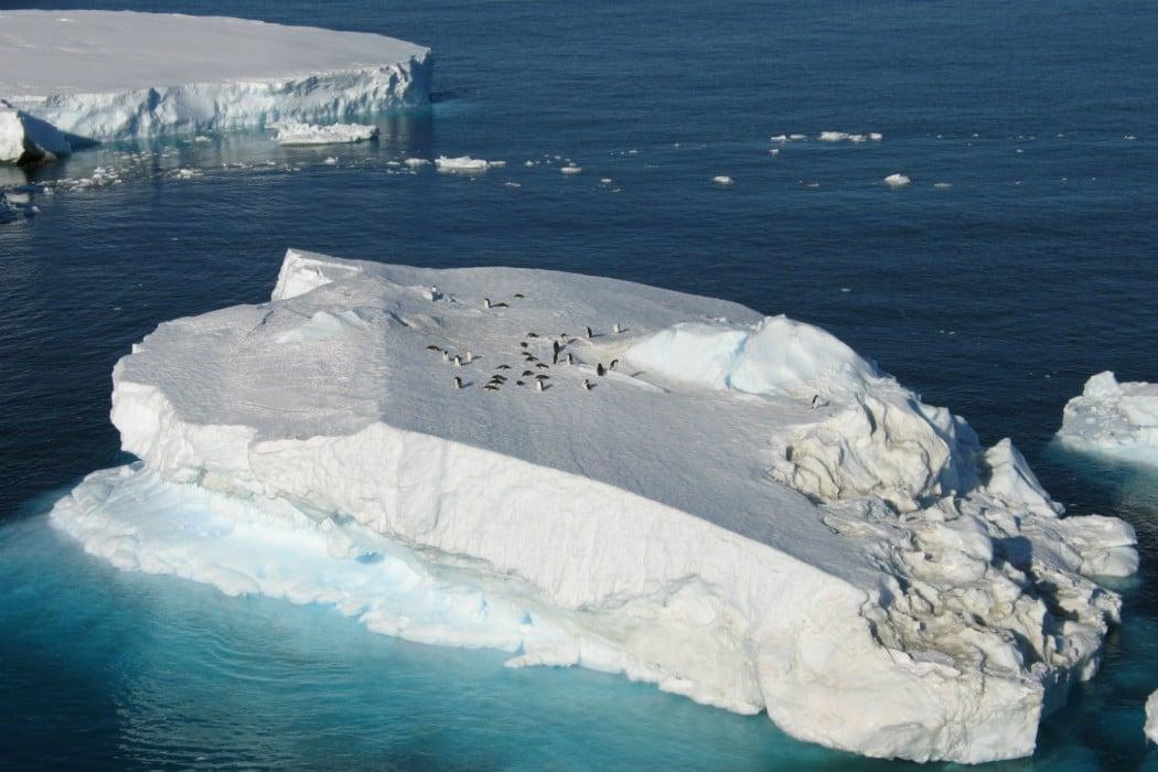 Mon Plus Beau Voyage - White Desert - icebergs with emperors