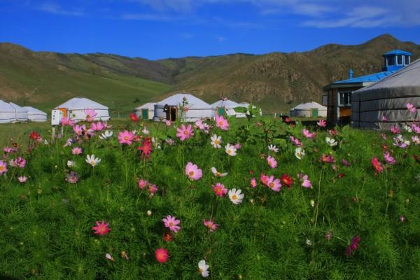 Mon Plus Beau Voyage_Mongolie_circuit luxe_yourtes mongoles