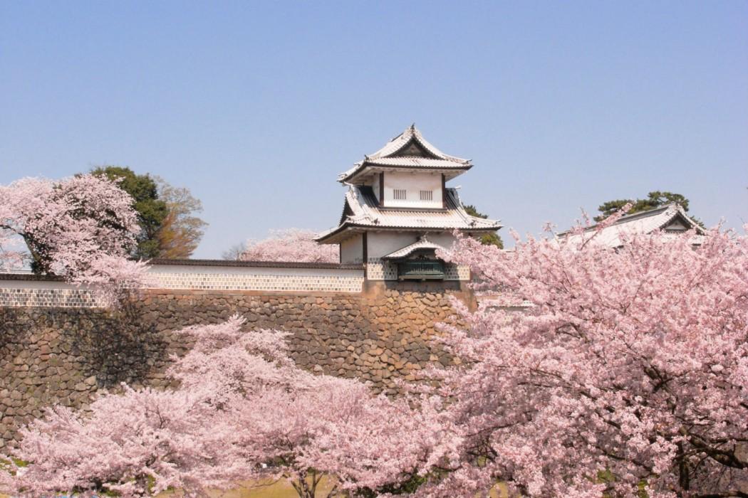 5b - Kanazawa Castle in spring