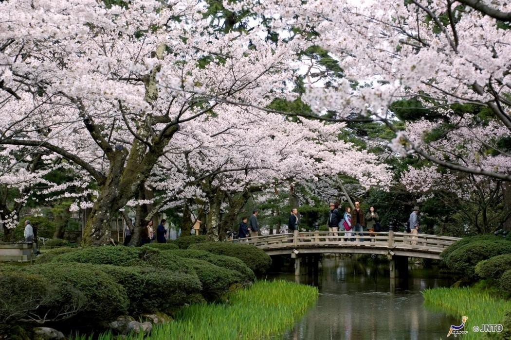Japon authentique-Kenrokuen Garden Kanazawa