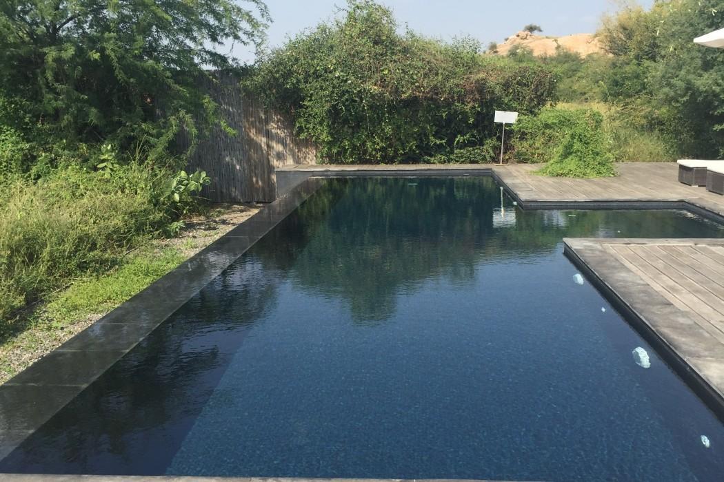mon-plus-beau-voyage-en-inde-au-rajasthan-133