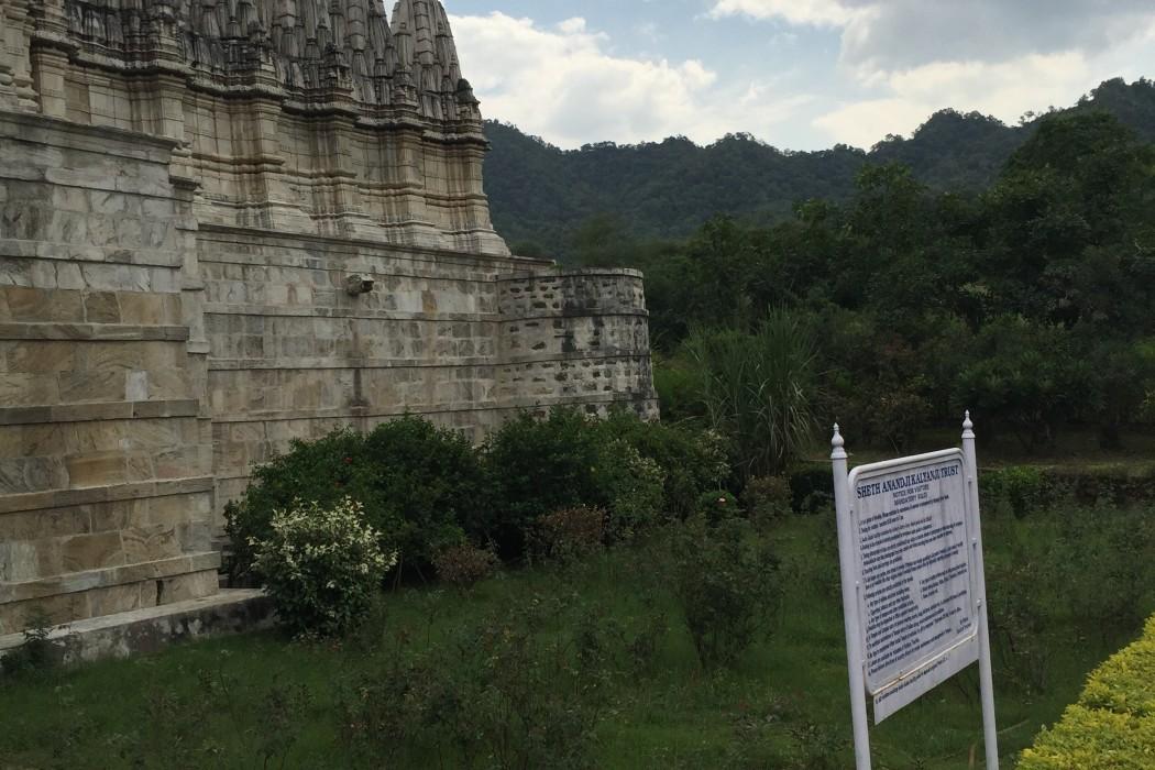 mon-plus-beau-voyage-en-inde-au-rajasthan-143