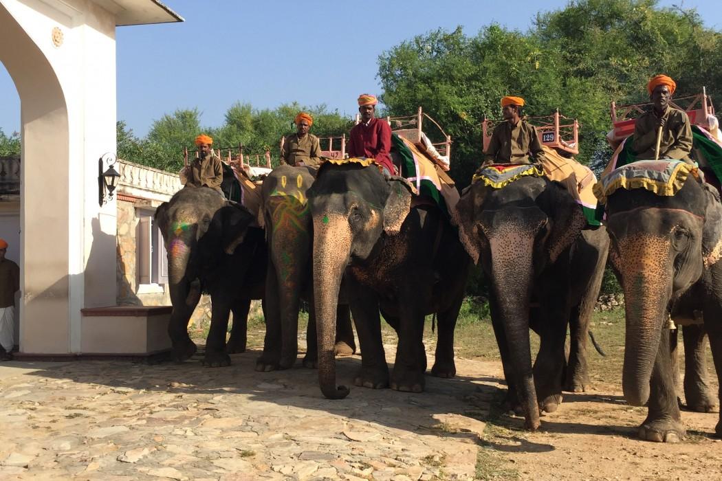 mon-plus-beau-voyage-en-inde-au-rajasthan-35