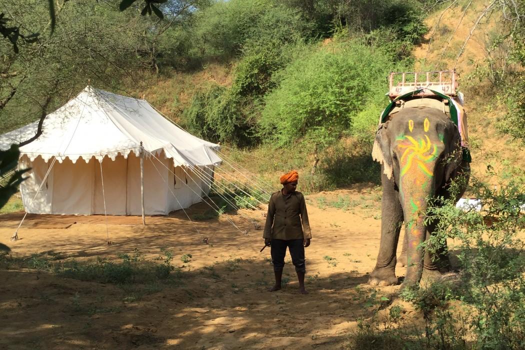 mon-plus-beau-voyage-en-inde-au-rajasthan-39