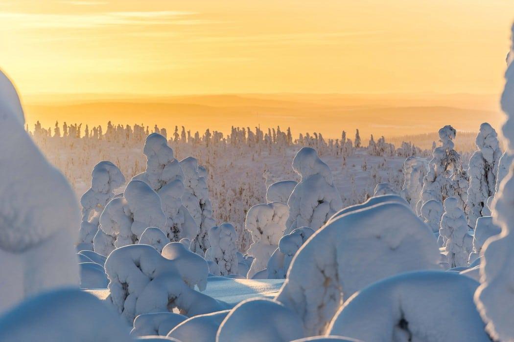 glamping-laponie-finlande-napapiiri-camp-paysage-1