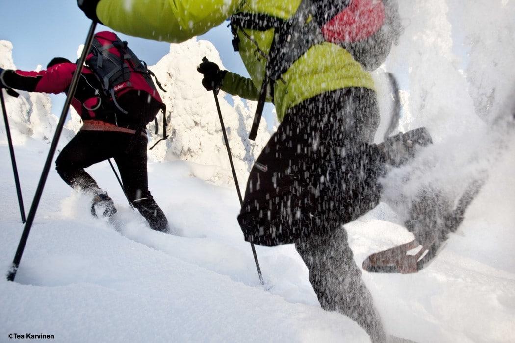 Lumikenkäilyä Kolin vaaramaisemissa.  Tammikuu 2010.  Photo by Tea Karvinen