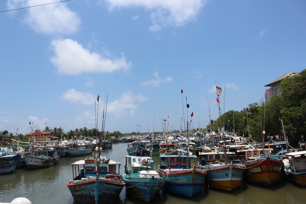 Mon Plus Beau Voyage au Sri Lanka gayangi-wirasinha-sri-lanka-fishing-habour-in-negombo