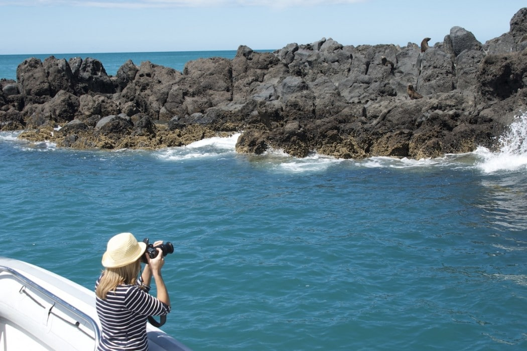 Mon Plus Beau Voyage en Nouvelle Zelande_HR Annandale Activities_Nature Cruises