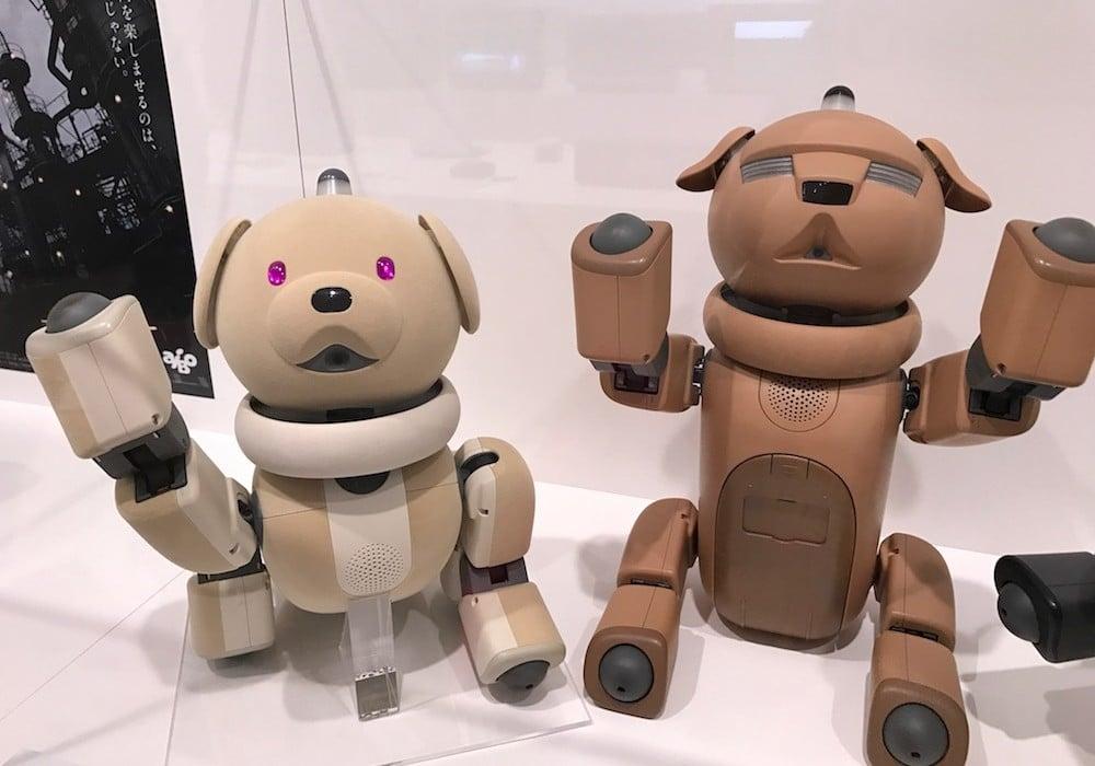 Circuit luxe sur mesure - Mon Plus Beau Voyage au Japon Hello Sony Dogs