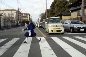 Mon Plus Beau Voyage au Japon