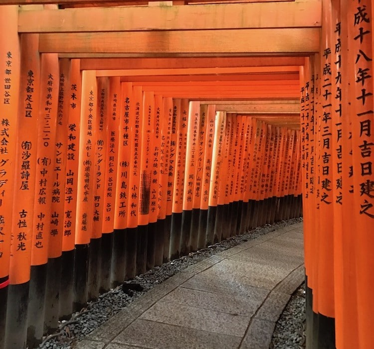 Torii de Kyoto.