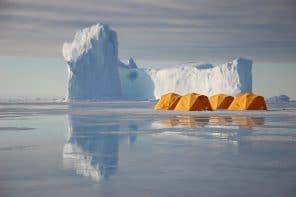 À la recherche des rois de l'Arctique