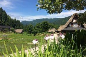 Magie des Alpes Japonaises