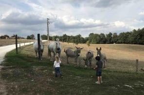 Un week-end à la ferme dans le Périgord !
